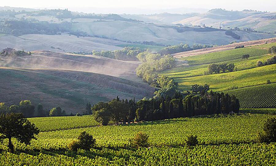 Campagne toscane. Source d'inspiration des parfumeurs Daphné Bugey et Nathalie Lorson