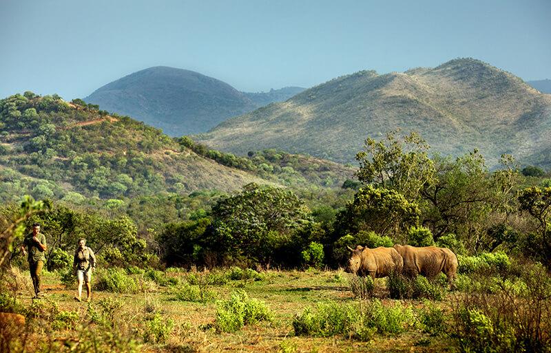 Kevin Pietersen et Petronel Nieuwoudt respectivement fondateurs de SORAI et de Care For Wild (c) Hublot