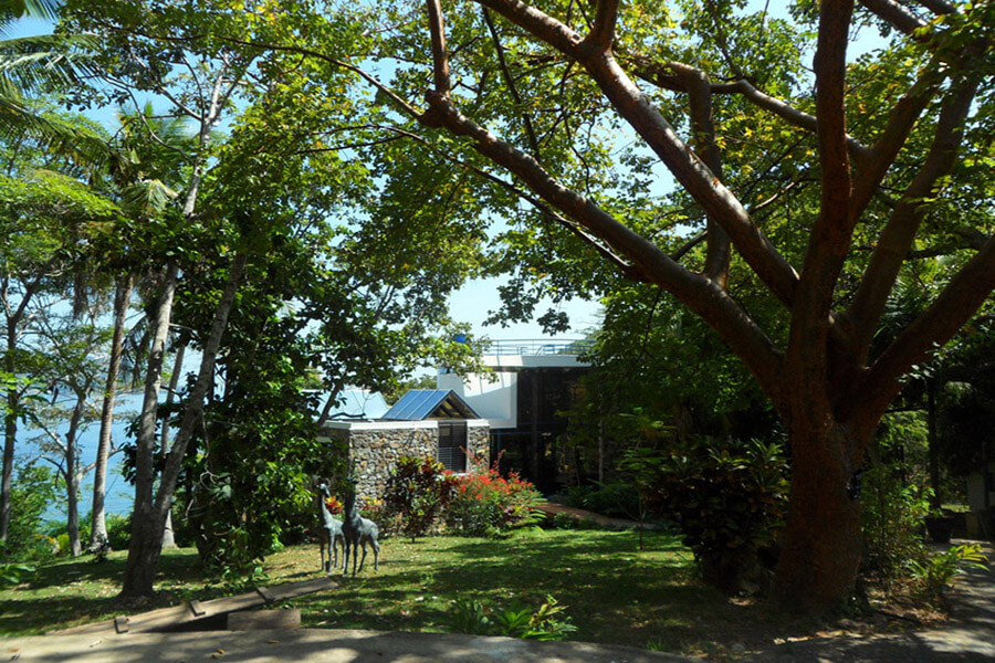 De jolies maisons cachées dans la végétation