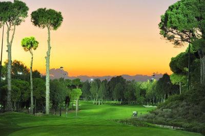 Une ambiance unique pour golfer de nuit Carya Golf