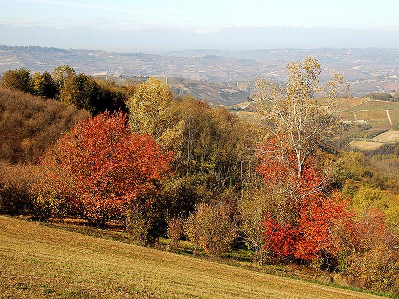 L'automne sur la région de Langhe Roero (c) Office de Tourisme d'Alba