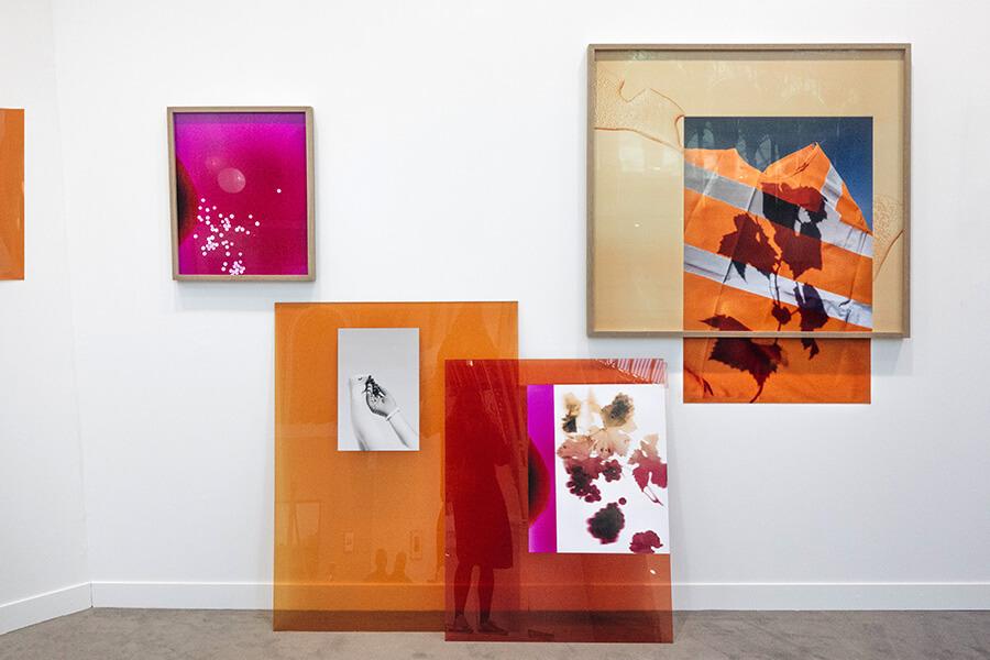 Aperçu des oeuvres d'Elsa Leydier Prix Ruinart 2019 à Palexpo