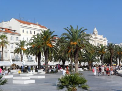 Split Promenade sur les quais bordés de palmiers (c)GAD