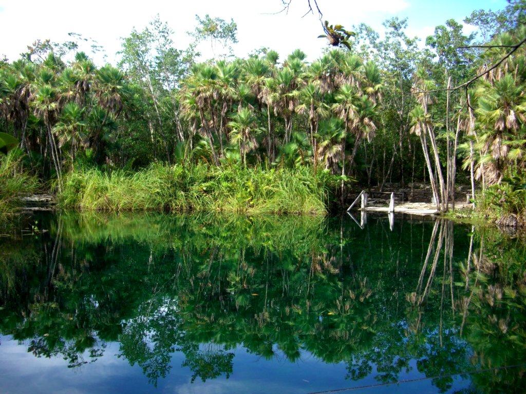 Une nature foisonnante la Réserve de Sian Ka'an est inscrite à l'UNESCO (c) GAD