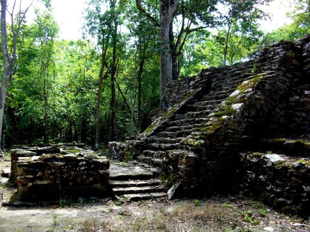 La jungle livre partout des témoignages de la grandeur des Mayas (c) GAD