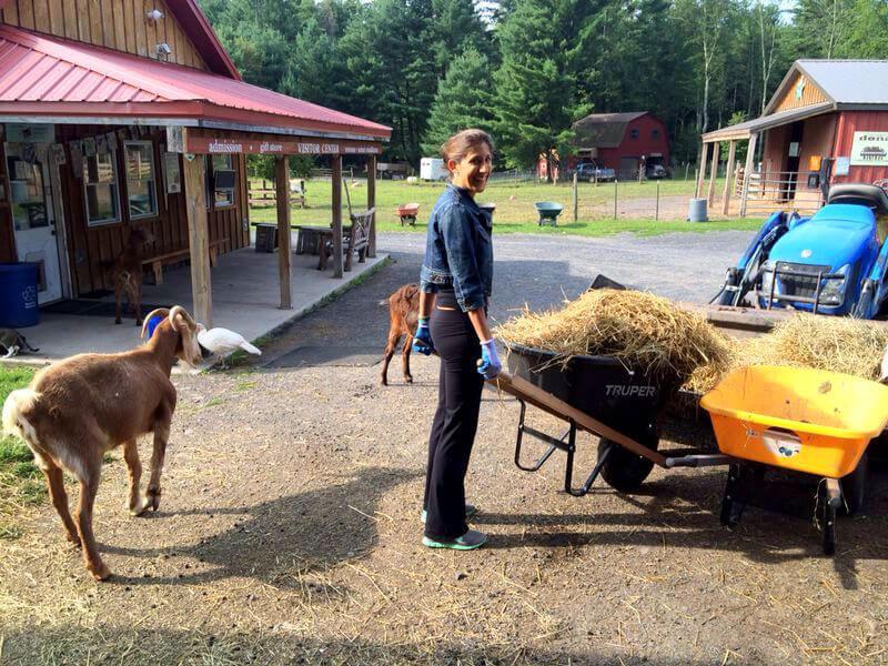 Entre les animaux en liberté et les travaux de la ferme Rima Lordonnois est parfaitement à son affaire