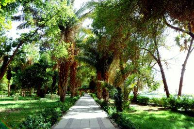 Un coin de Paradis où retrouver la nature dans l'intimité d'une propriété privée (c) GAD