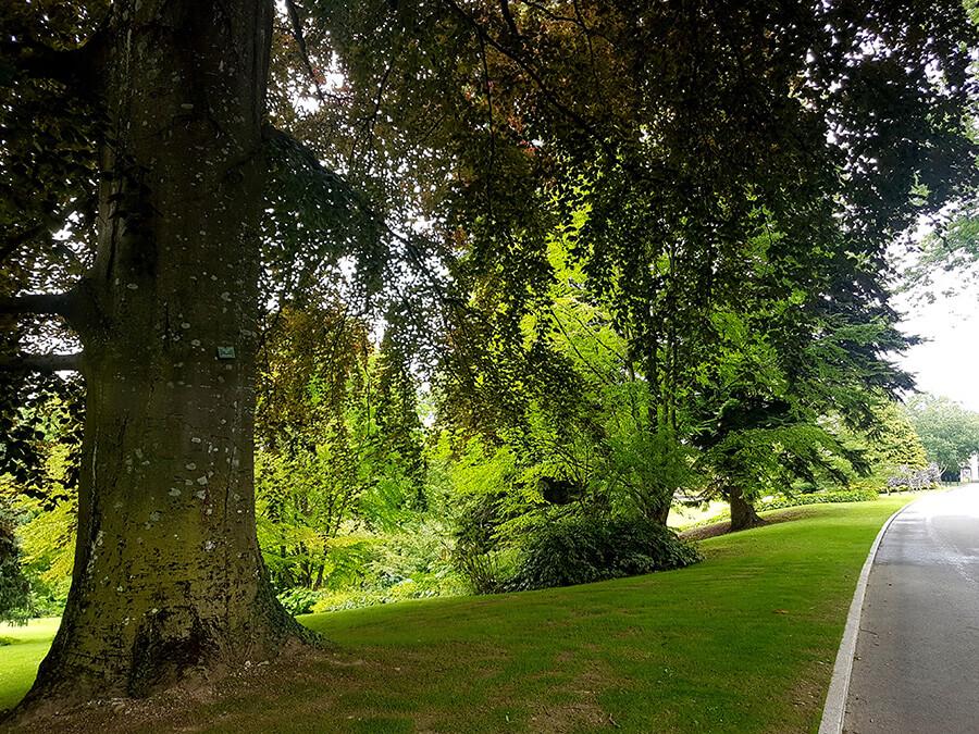 l'Hôtel Royal est situé sur un vaste domaine d'une centaine d'hectares au milieu d'une nature luxuriante (c) GAD