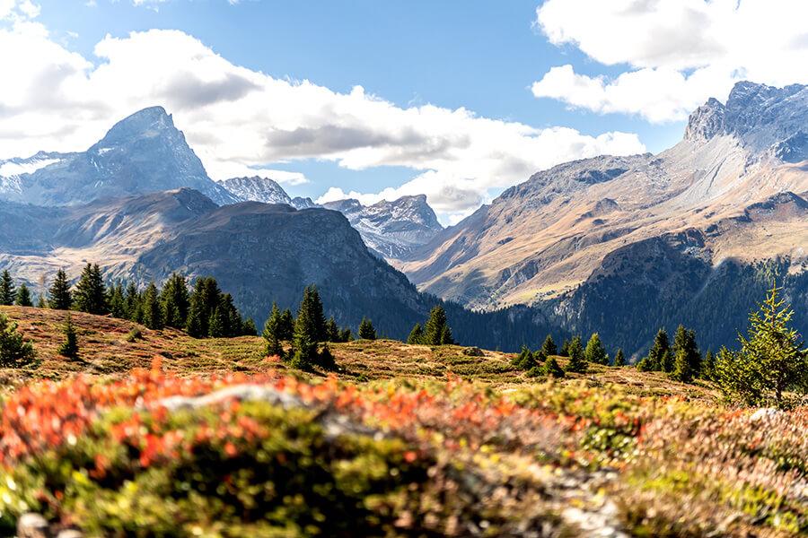 Alp Flix un paysage de landes protégé et d'importance nationale, une oasis de calme (c) Grisons Tourism