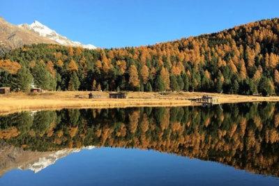 Muottas da Schlarigna une longue traversée d'anciennes forêts offrant une vue sur les lacs de Haute Engadine (c) Engadine Tourisme