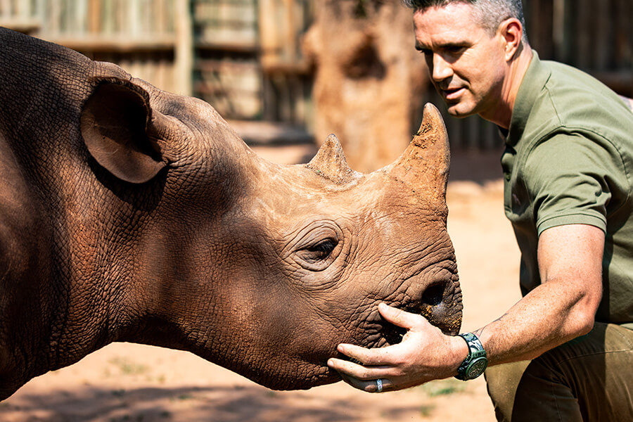 Kevin Pietersen portant la Hublot Big Bang SORAI inspirée en hommage à la lutte et la protection des rhinocéros (c) Hublot